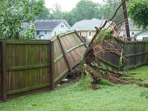 fence-damage-from-tree
